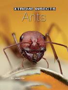 Ants, ed. , v.