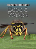 Bees & Wasps, ed. , v.