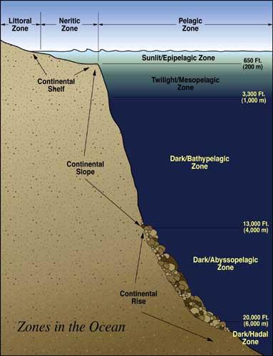 how deep is the ocean pdf