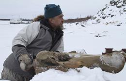 Russia Mammoth Extinction Investigation