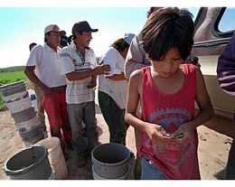 Mexican Migrant Workers