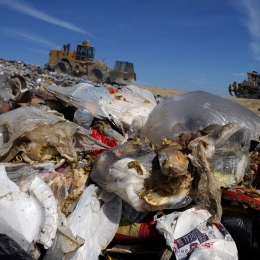 Garbage, including rotting food, is seen piled in a landfill