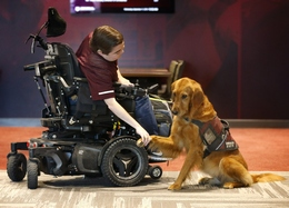 Texas A&M Researches Duchenne Muscular Dystrophy in Dogs